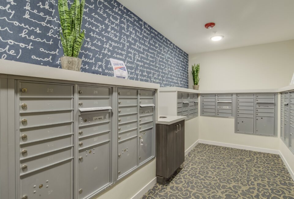Mailboxes in mail room with patterned carpet and navy and white walls.