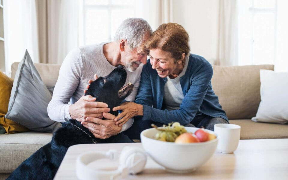 Senior man and woman on sofa petting black dog and smiling
